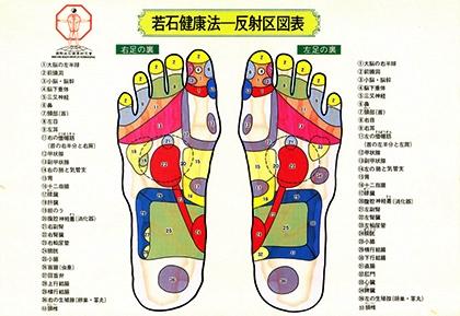 若石健康法~反射区図表